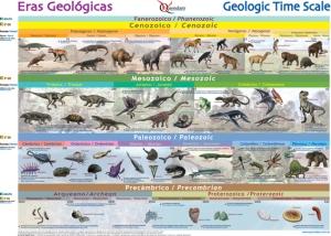 Centrémonos un poco: Las Eras Geológicas y sus organismos